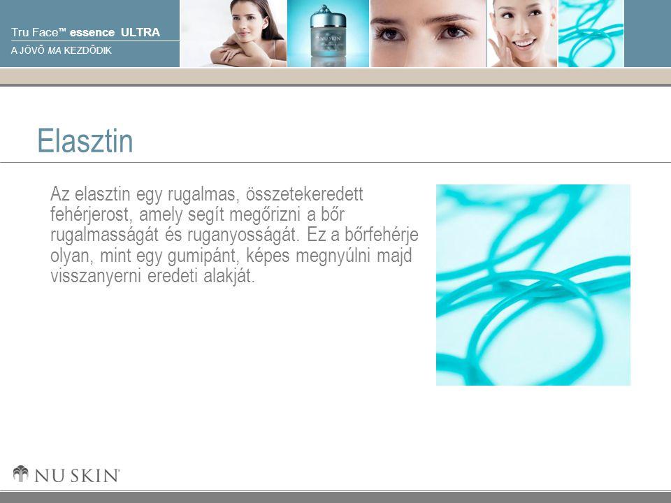 © 2001 Nu Skin International, Inc Tru Face ™ essence ULTRA A JÖVŐ MA KEZDŐDIK Elasztin Az elasztin egy rugalmas, összetekeredett fehérjerost, amely segít megőrizni a bőr rugalmasságát és ruganyosságát.