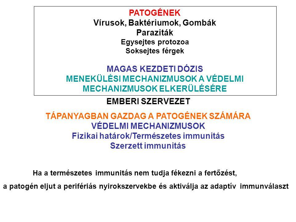 PATOGÉNEK Vírusok, Baktériumok, Gombák Paraziták Egysejtes protozoa Soksejtes férgek MAGAS KEZDETI DÓZIS MENEKÜLÉSI MECHANIZMUSOK A VÉDELMI MECHANIZMU
