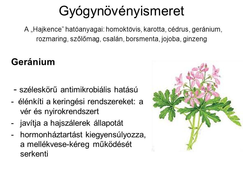 """Gyógynövényismeret A """"Hajkence"""" hatóanyagai: homoktövis, karotta, cédrus, geránium, rozmaring, szőlőmag, csalán, borsmenta, jojoba, ginzeng Geránium -"""
