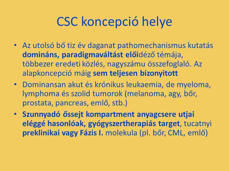 CSC koncepció helye Az utolsó bő tiz év daganat pathomechanismus kutatás domináns, paradigmaváltást előidéző témája, többezer eredeti közlés, nagyszám