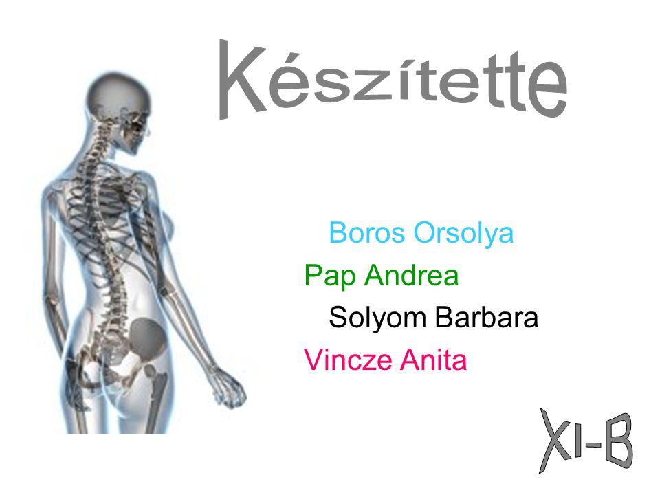 Boros Orsolya Pap Andrea Solyom Barbara Vincze Anita