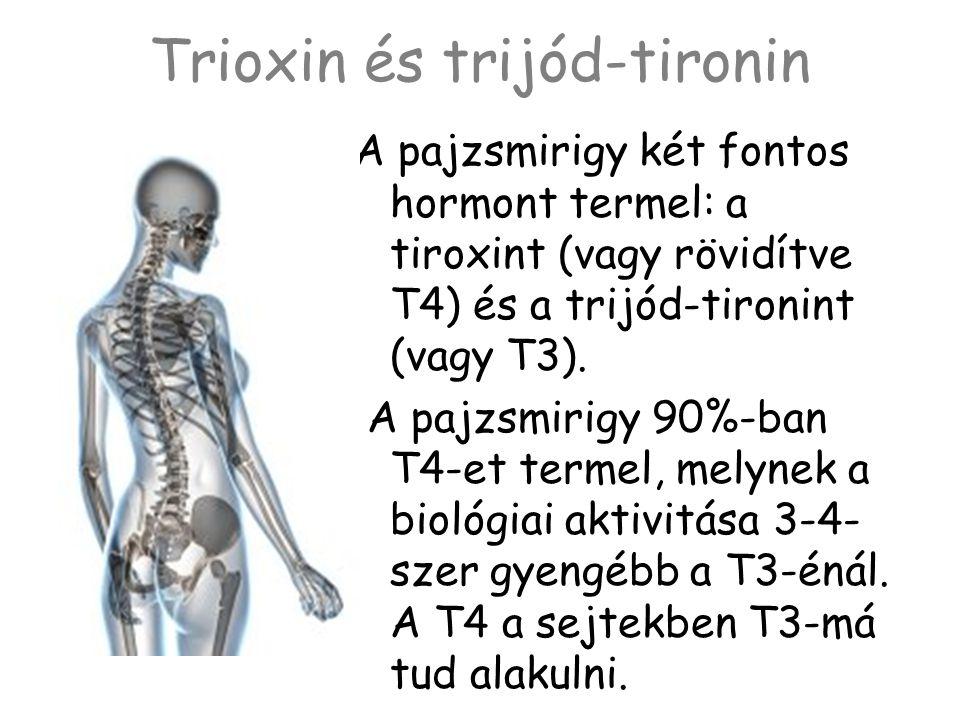 Trioxin és trijód-tironin A pajzsmirigy két fontos hormont termel: a tiroxint (vagy rövidítve T4) és a trijód-tironint (vagy T3). A pajzsmirigy 90%-ba