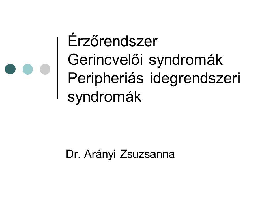 Tractus spinothalamicus rendszer Protopathiás érzéskvalitások: hő, fájdalom, felületes tapintás Rosttípusok: C rostok (vékony nem mielinizált) Aδ rostok (vékony mielinizált)