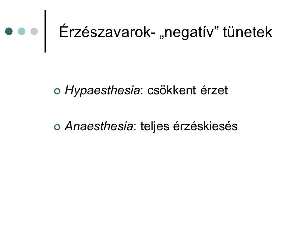 """Érzészavarok- """"negatív"""" tünetek Hypaesthesia: csökkent érzet Anaesthesia: teljes érzéskiesés"""