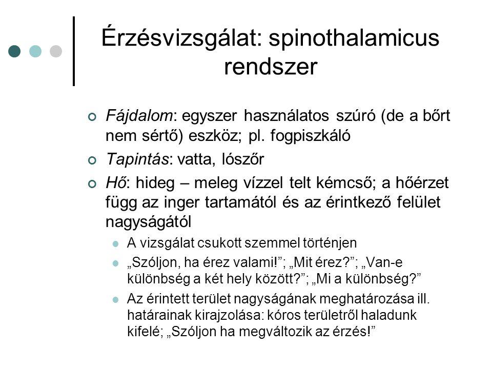 Érzésvizsgálat: spinothalamicus rendszer Fájdalom: egyszer használatos szúró (de a bőrt nem sértő) eszköz; pl. fogpiszkáló Tapintás: vatta, lószőr Hő: