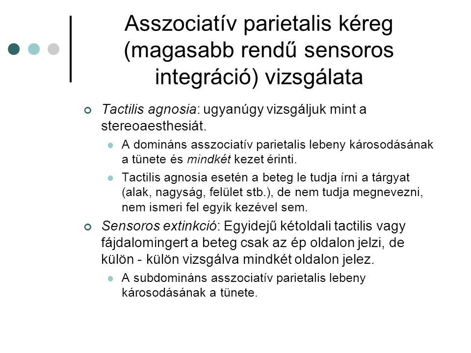 Asszociatív parietalis kéreg (magasabb rendű sensoros integráció) vizsgálata Tactilis agnosia: ugyanúgy vizsgáljuk mint a stereoaesthesiát. A domináns