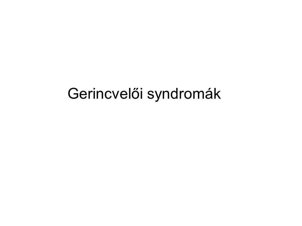 Gerincvelői syndromák