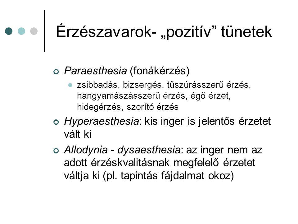 """Érzészavarok- """"negatív tünetek Hypaesthesia: csökkent érzet Anaesthesia: teljes érzéskiesés"""