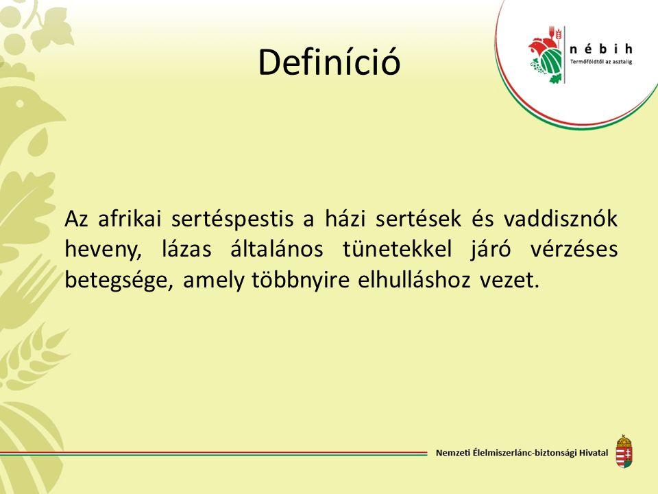 Definíció Az afrikai sertéspestis a házi sertések és vaddisznók heveny, lázas általános tünetekkel járó vérzéses betegsége, amely többnyire elhullásho