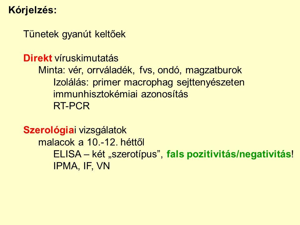 IHC RT-PCR pozitív negatív