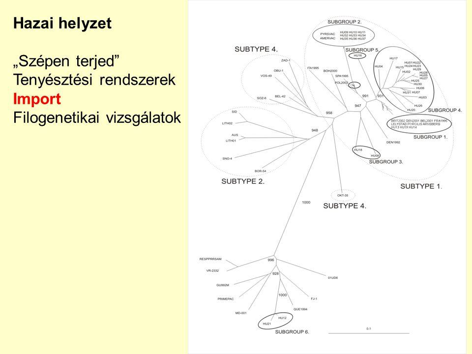 """Hazai helyzet """"Szépen terjed"""" Tenyésztési rendszerek Import Filogenetikai vizsgálatok"""