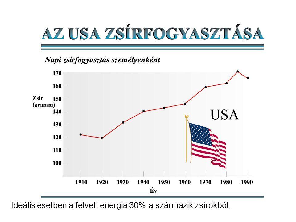 Ideális esetben a felvett energia 30%-a származik zsírokból.