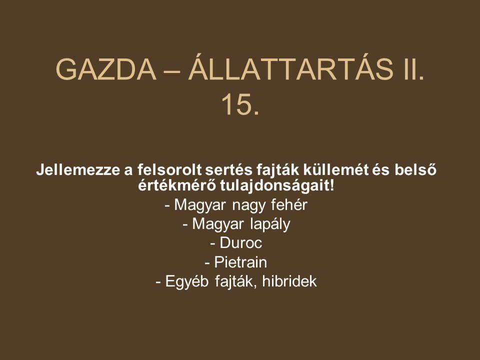 GAZDA – ÁLLATTARTÁS II.15.
