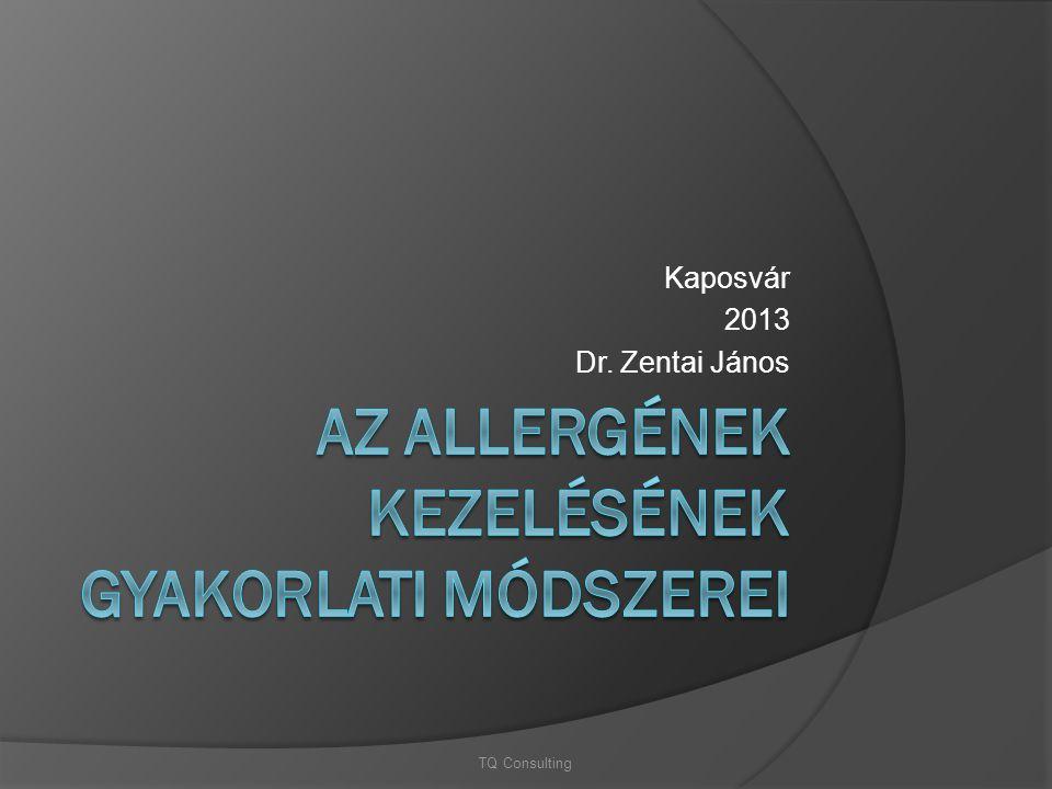 Kaposvár 2013 Dr. Zentai János TQ Consulting