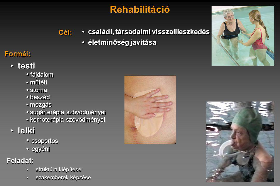családi, társadalmi visszailleszkedés életminőség javítása családi, társadalmi visszailleszkedés életminőség javítása Cél: Rehabilitáció testi fájdalom műtéti stoma beszéd mozgás sugárterápia szövődményei kemoterápia szövődményei lelki csoportos egyéni testi fájdalom műtéti stoma beszéd mozgás sugárterápia szövődményei kemoterápia szövődményei lelki csoportos egyéni Formái: Feladat: struktúra kiépítése szakemberek képzése Feladat: struktúra kiépítése szakemberek képzése