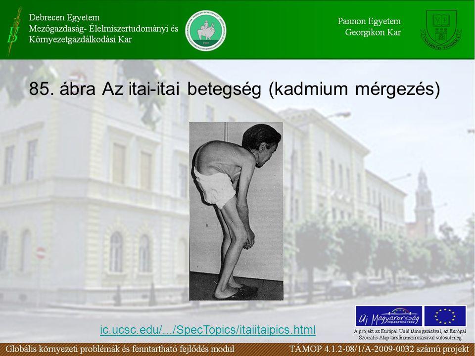 85. ábra Az itai-itai betegség (kadmium mérgezés) ic.ucsc.edu/.../SpecTopics/itaiitaipics.html