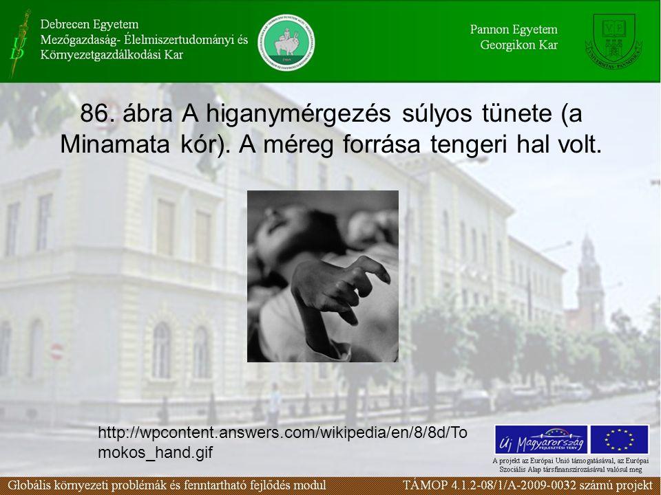 86. ábra A higanymérgezés súlyos tünete (a Minamata kór). A méreg forrása tengeri hal volt. http://wpcontent.answers.com/wikipedia/en/8/8d/To mokos_ha
