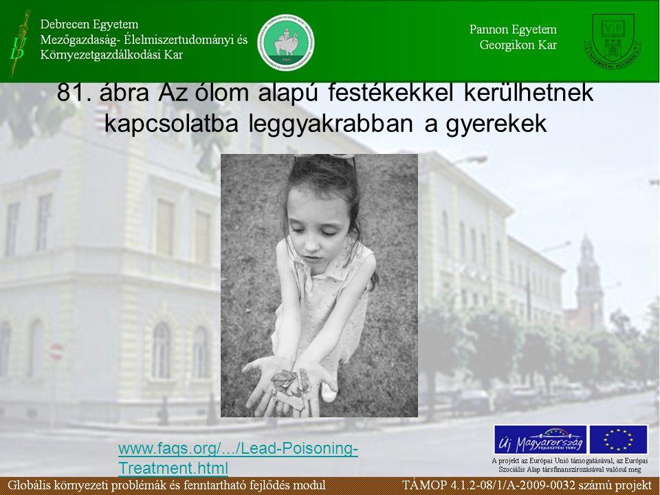 81. ábra Az ólom alapú festékekkel kerülhetnek kapcsolatba leggyakrabban a gyerekek www.faqs.org/.../Lead-Poisoning- Treatment.html