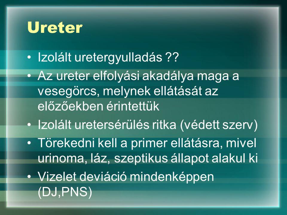 Ureter Izolált uretergyulladás ?? Az ureter elfolyási akadálya maga a vesegörcs, melynek ellátását az előzőekben érintettük Izolált uretersérülés ritk