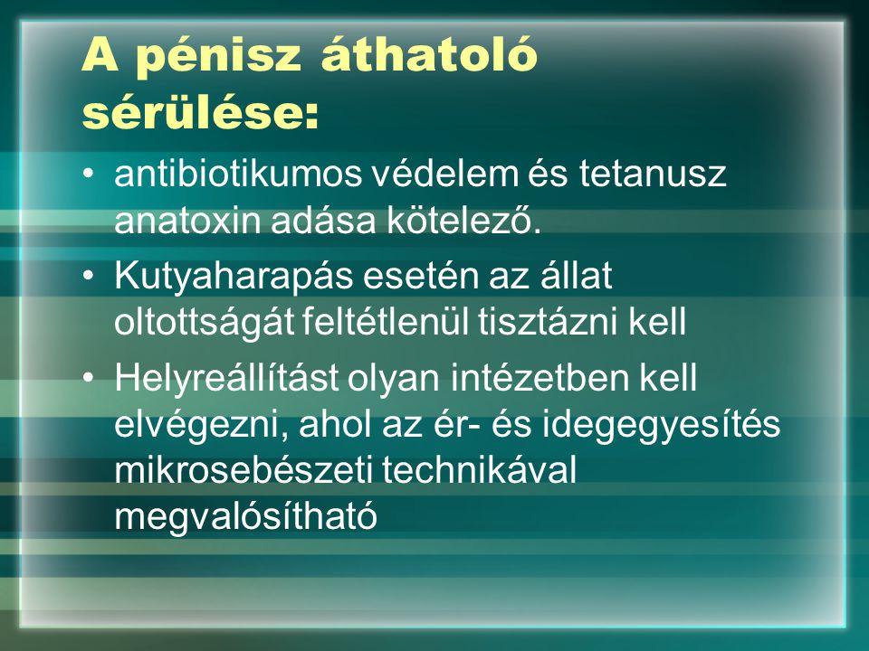 A pénisz áthatoló sérülése: antibiotikumos védelem és tetanusz anatoxin adása kötelező. Kutyaharapás esetén az állat oltottságát feltétlenül tisztázni