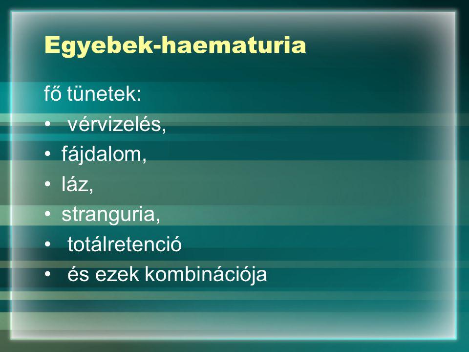 Egyebek-haematuria fő tünetek: vérvizelés, fájdalom, láz, stranguria, totálretenció és ezek kombinációja