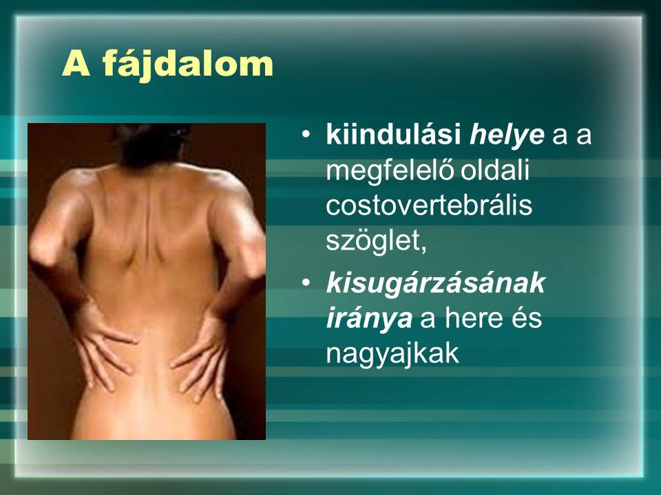 A fájdalom kiindulási helye a a megfelelő oldali costovertebrális szöglet, kisugárzásának iránya a here és nagyajkak
