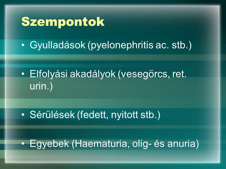 Szempontok Gyulladások (pyelonephritis ac. stb.) Elfolyási akadályok (vesegörcs, ret. urin.) Sérülések (fedett, nyitott stb.) Egyebek (Haematuria, oli