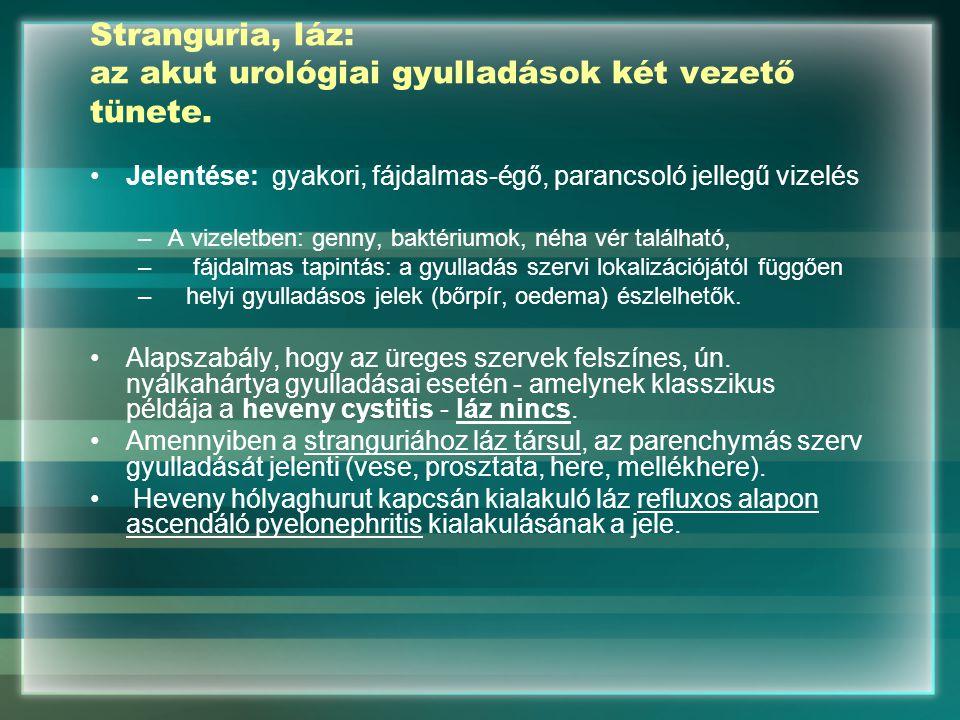 Stranguria, láz: az akut urológiai gyulladások két vezető tünete. Jelentése: gyakori, fájdalmas-égő, parancsoló jellegű vizelés –A vizeletben: genny,