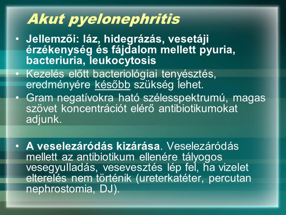 Akut pyelonephritis Jellemzői: láz, hidegrázás, vesetáji érzékenység és fájdalom mellett pyuria, bacteriuria, leukocytosis Kezelés előtt bacteriológia