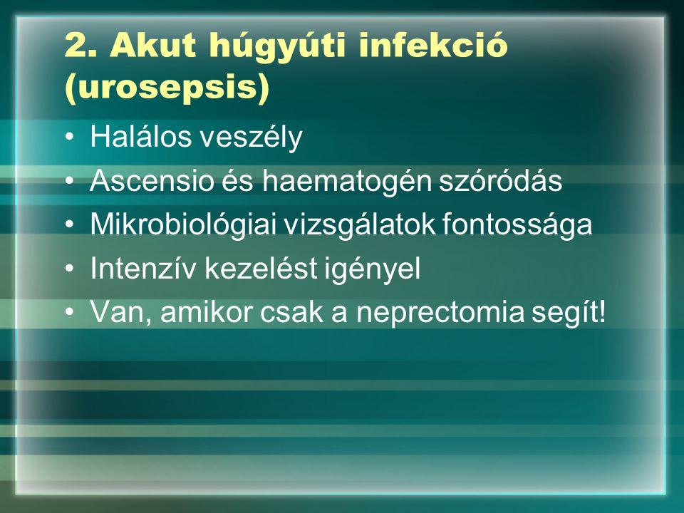 2. Akut húgyúti infekció (urosepsis) Halálos veszély Ascensio és haematogén szóródás Mikrobiológiai vizsgálatok fontossága Intenzív kezelést igényel V