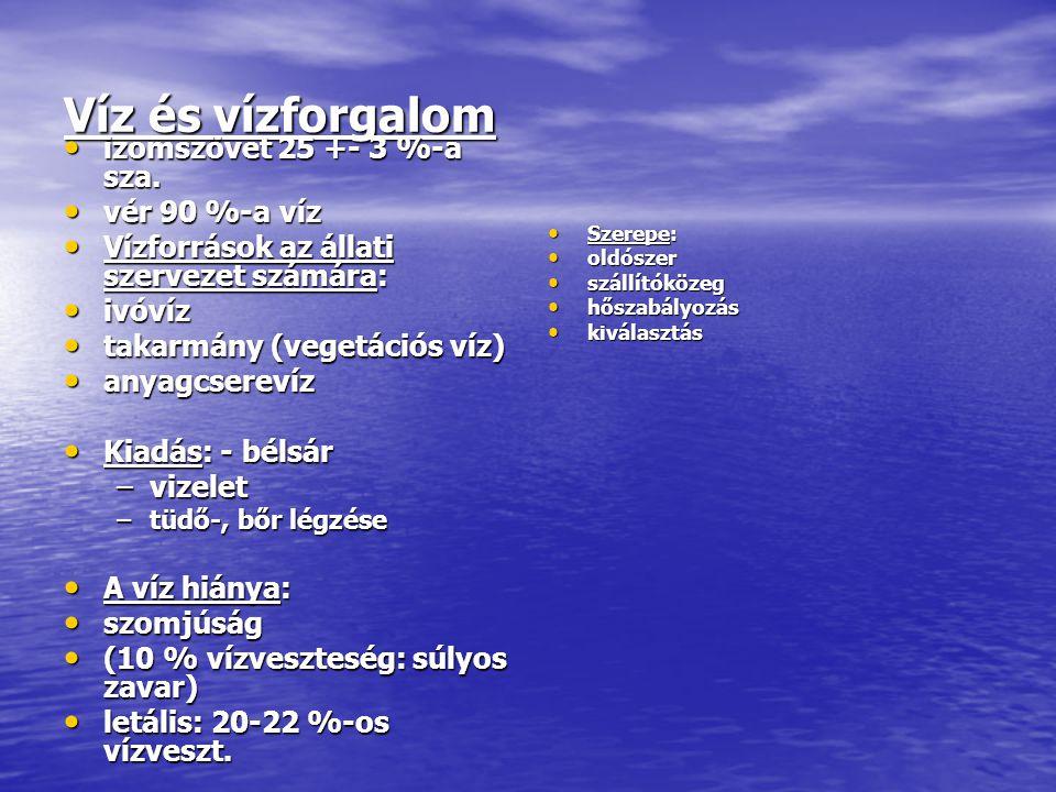 Víz és vízforgalom izomszövet 25 +- 3 %-a sza. izomszövet 25 +- 3 %-a sza.