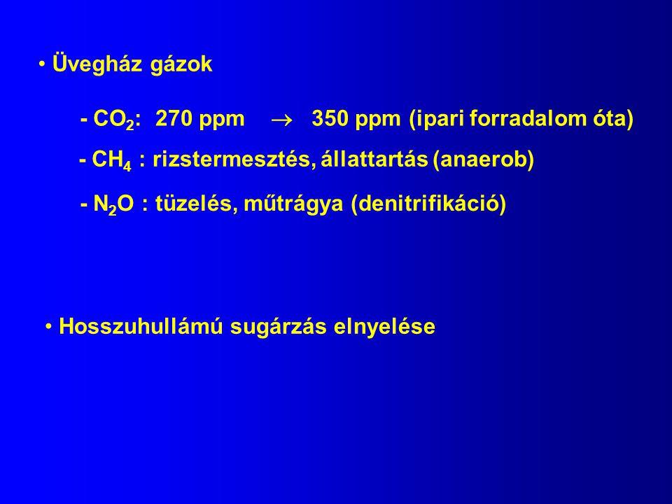 Hosszuhullámú sugárzás elnyelése Üvegház gázok - CO 2 : 270 ppm  350 ppm (ipari forradalom óta) - CH 4 : rizstermesztés, állattartás (anaerob) - N 2