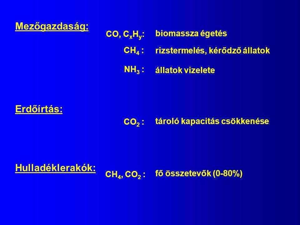 Mezőgazdaság: CO, C x H y : biomassza égetés NH 3 : állatok vizelete CH 4 : rizstermelés, kérődző állatok Erdőírtás: CO 2 : tároló kapacitás csökkenés