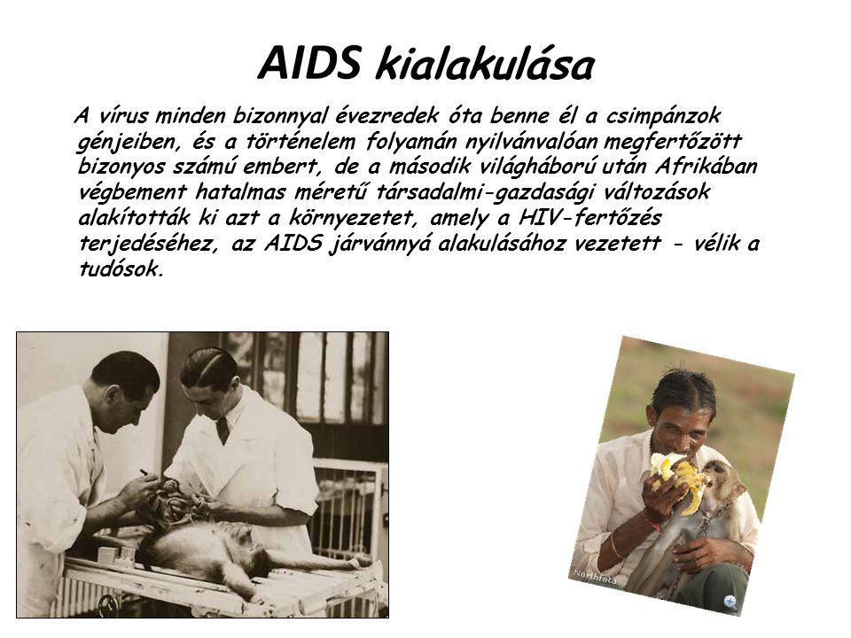 AIDS kialakulása A vírus minden bizonnyal évezredek óta benne él a csimpánzok génjeiben, és a történelem folyamán nyilvánvalóan megfertőzött bizonyos