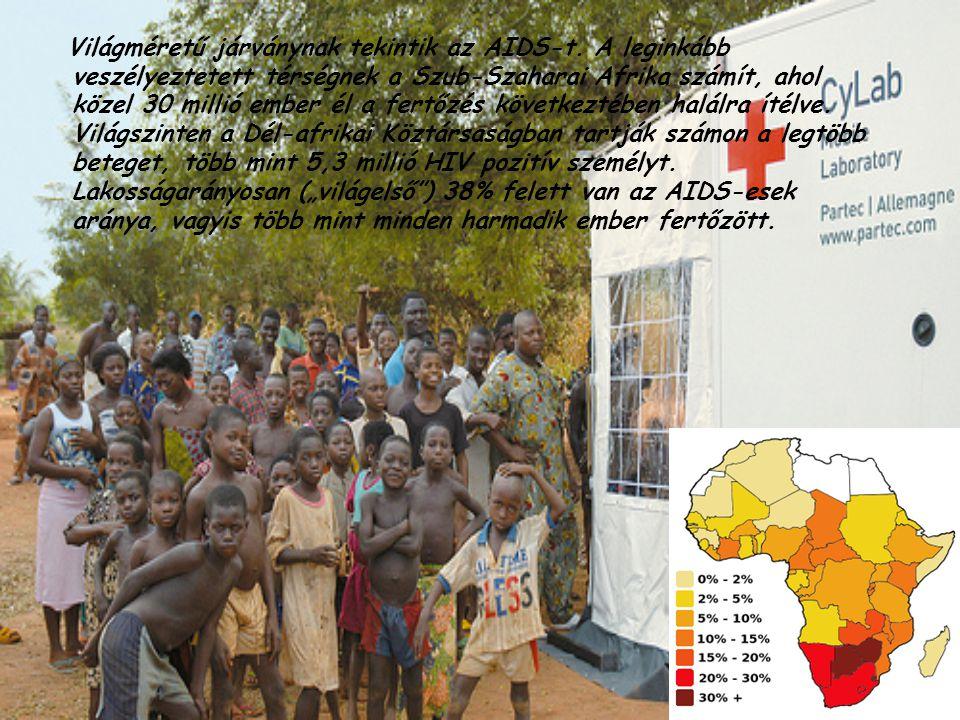Világméretű járványnak tekintik az AIDS-t. A leginkább veszélyeztetett térségnek a Szub-Szaharai Afrika számít, ahol közel 30 millió ember él a fertőz
