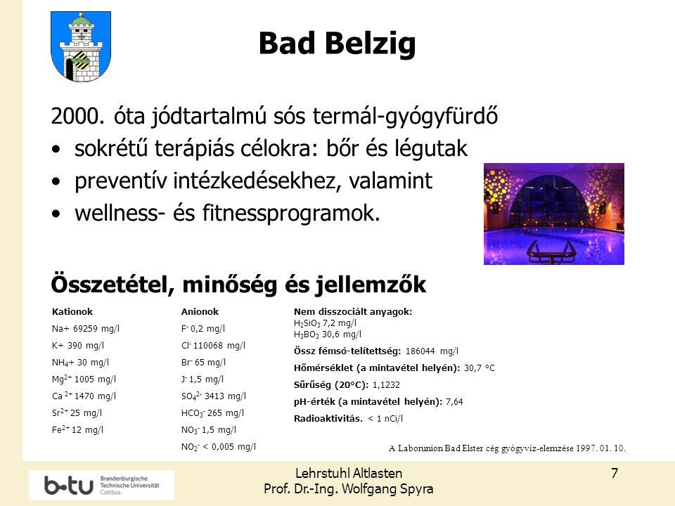 Lehrstuhl Altlasten Prof. Dr.-Ing. Wolfgang Spyra 7 Kationok Na+ 69259 mg/l K+ 390 mg/l NH 4 + 30 mg/l Mg 2+ 1005 mg/l Ca 2+ 1470 mg/l Sr 2+ 25 mg/l F