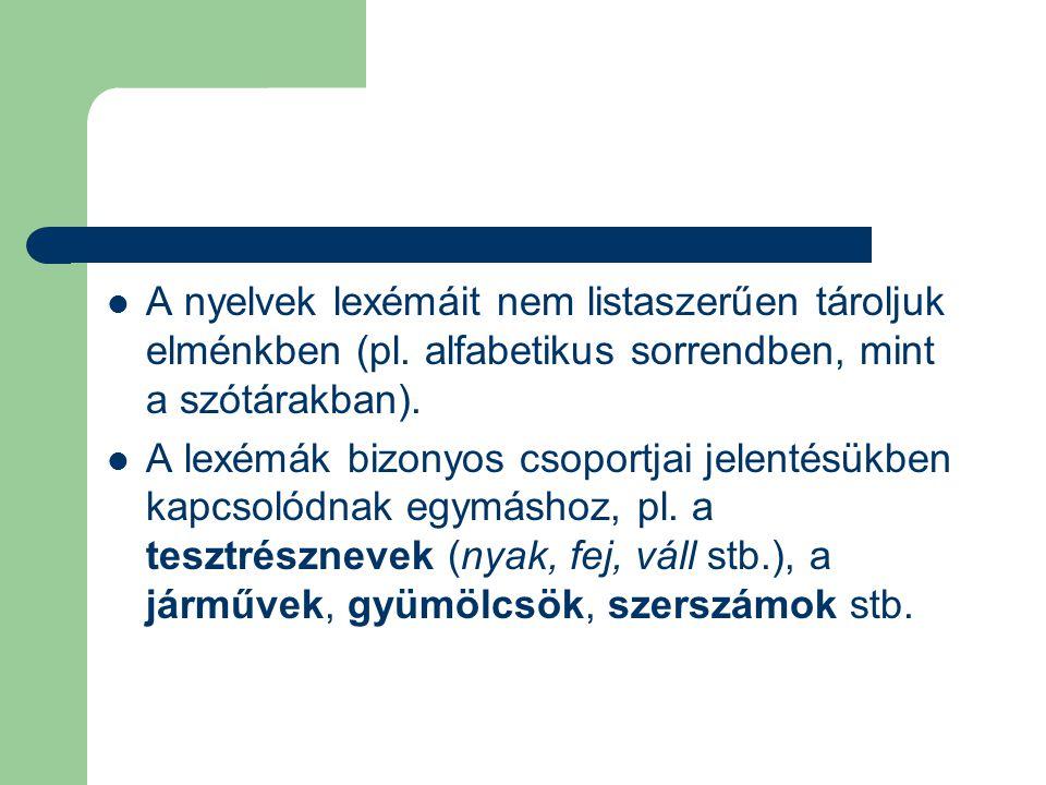 A nyelvek lexémáit nem listaszerűen tároljuk elménkben (pl. alfabetikus sorrendben, mint a szótárakban). A lexémák bizonyos csoportjai jelentésükben k