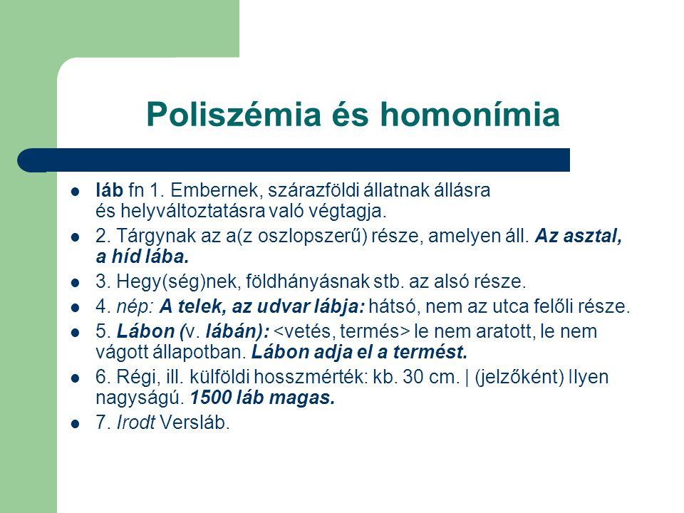 Poliszémia és homonímia láb fn 1. Embernek, szárazföldi állatnak állásra és helyváltoztatásra való végtagja. 2. Tárgynak az a(z oszlopszerű) része, am