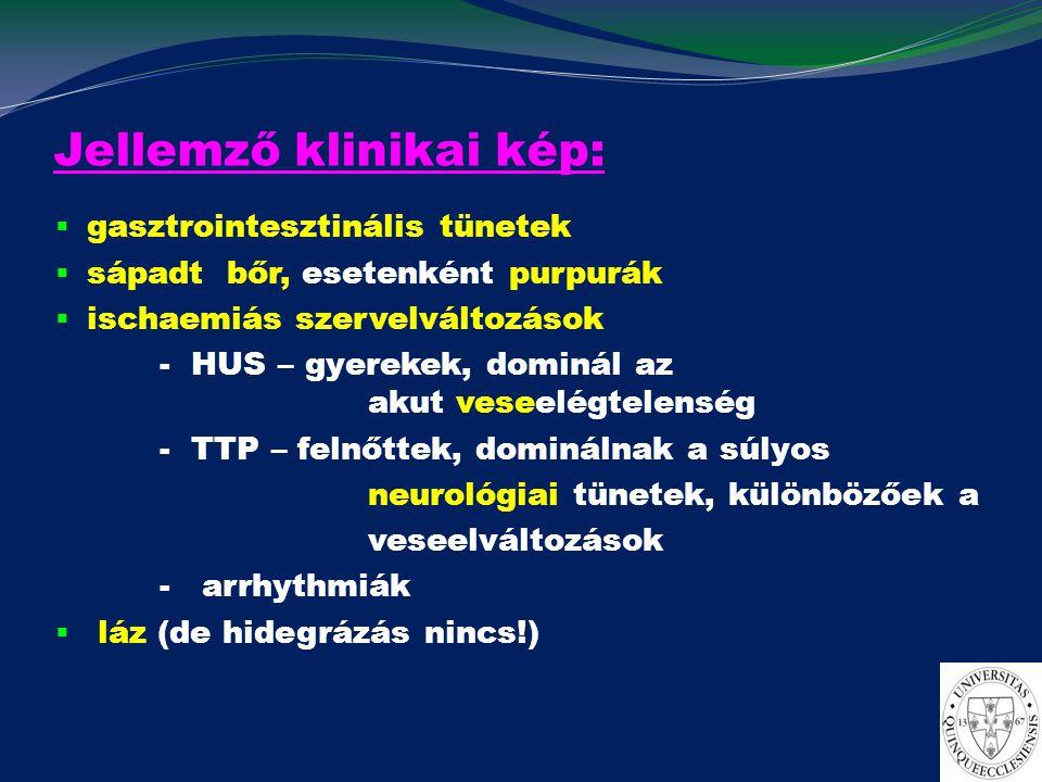 A TMA elkülönítő diagnoszt ikája Klinikai gyanújelek hányás, hasmenés, sápadt bőr, purpurák, neurológiai jelek, oligo/anuria Laboratóriumi eltérések thrombocytopaenia haemolyticus (Combs neg.) anaemia szérum LDH ↑ perifériás kenetben sisaksejtek Elkülönítő diagnosztika  hasmenés  akut veseelégtelenség  neurológiai jelek nincsenek vagy enyhék  hasmenés nincs  neurológiai tünetek  szisztémás betegségek  terhesség  gyógyszerek D+ HUS E.Coli v.