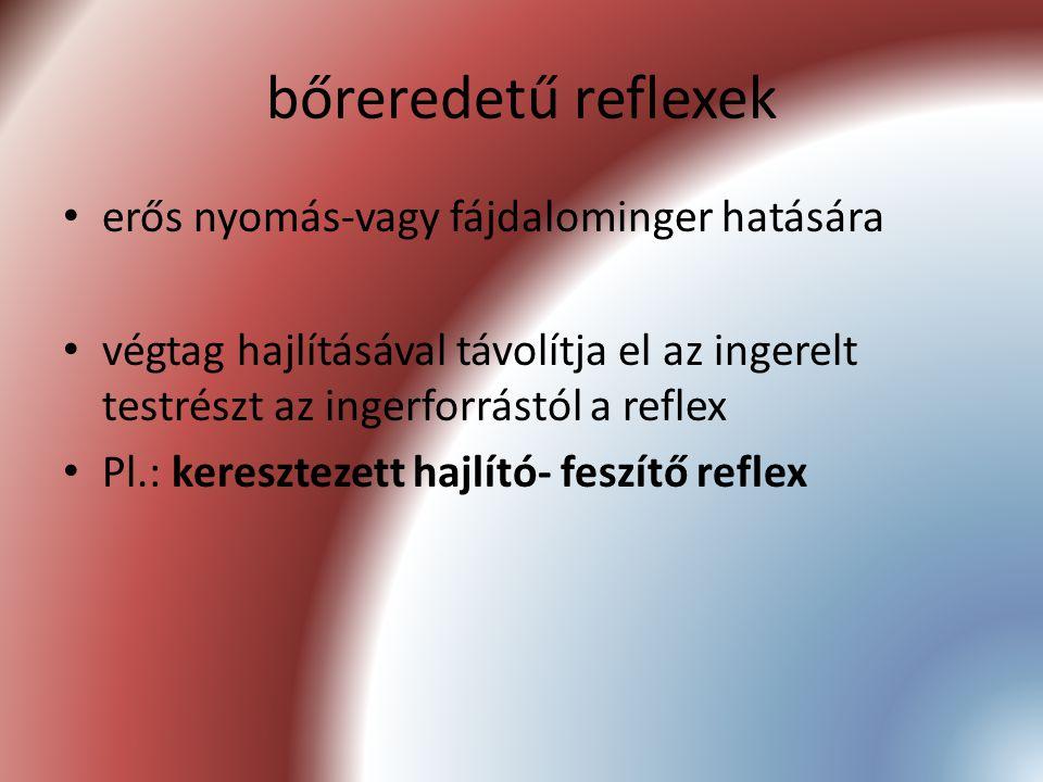 bőreredetű reflexek erős nyomás-vagy fájdalominger hatására végtag hajlításával távolítja el az ingerelt testrészt az ingerforrástól a reflex Pl.: ker