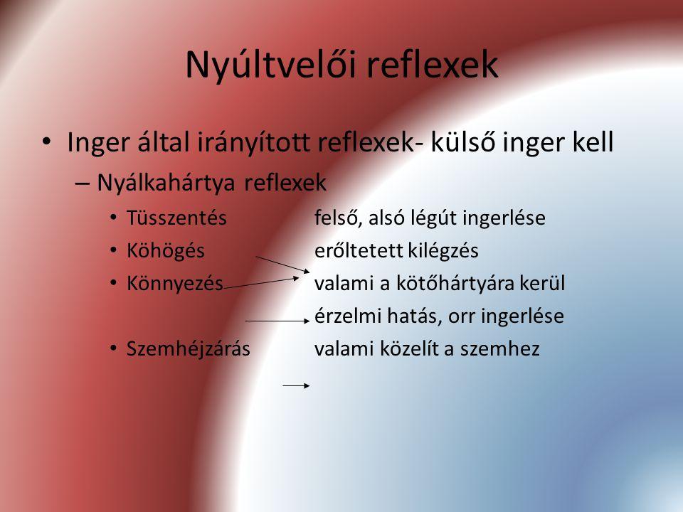 Nyúltvelői reflexek Inger által irányított reflexek- külső inger kell – Nyálkahártya reflexek Tüsszentésfelső, alsó légút ingerlése Köhögéserőltetett