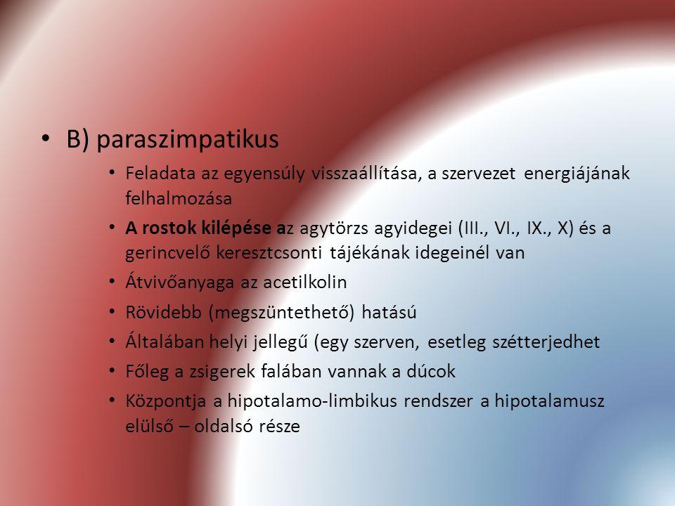 B) paraszimpatikus Feladata az egyensúly visszaállítása, a szervezet energiájának felhalmozása A rostok kilépése az agytörzs agyidegei (III., VI., IX.