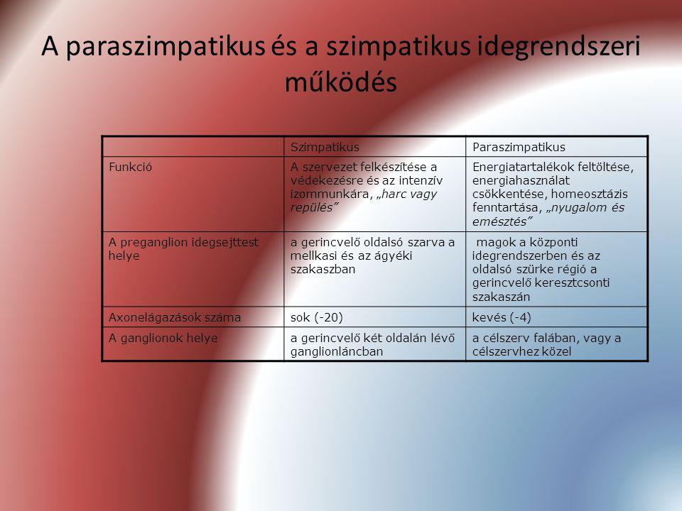 A paraszimpatikus és a szimpatikus idegrendszeri működés SzimpatikusParaszimpatikus FunkcióA szervezet felkészítése a védekezésre és az intenzív izomm