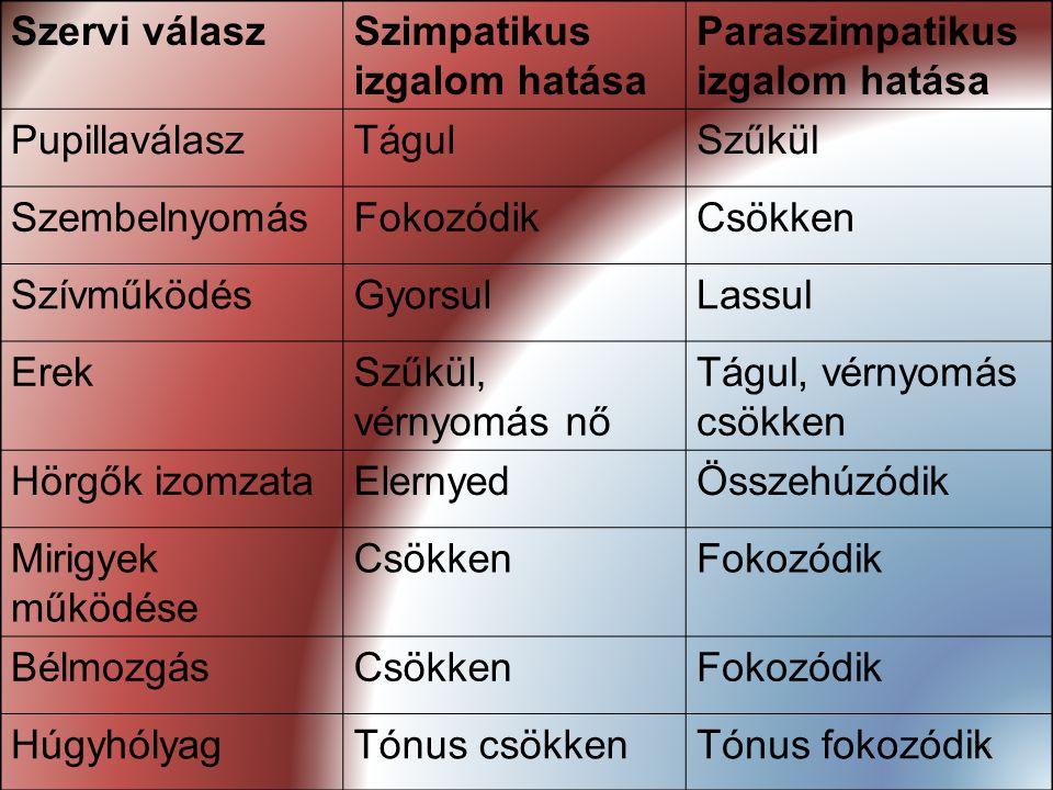 78 Szervi válaszSzimpatikus izgalom hatása Paraszimpatikus izgalom hatása PupillaválaszTágulSzűkül SzembelnyomásFokozódikCsökken SzívműködésGyorsulLas