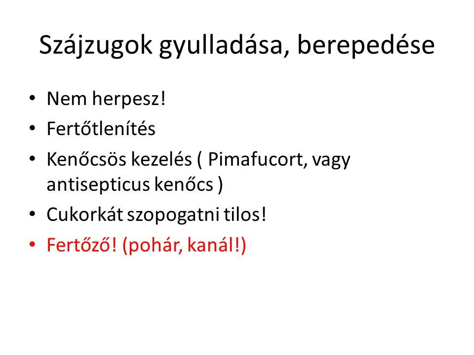 Szájzugok gyulladása, berepedése Nem herpesz! Fertőtlenítés Kenőcsös kezelés ( Pimafucort, vagy antisepticus kenőcs ) Cukorkát szopogatni tilos! Fertő