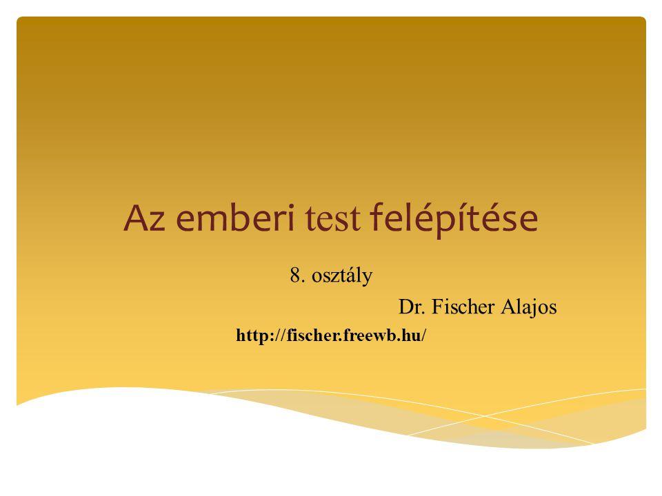 Az emberi test felépítése 8. osztály Dr. Fischer Alajos http://fischer.freewb.hu/