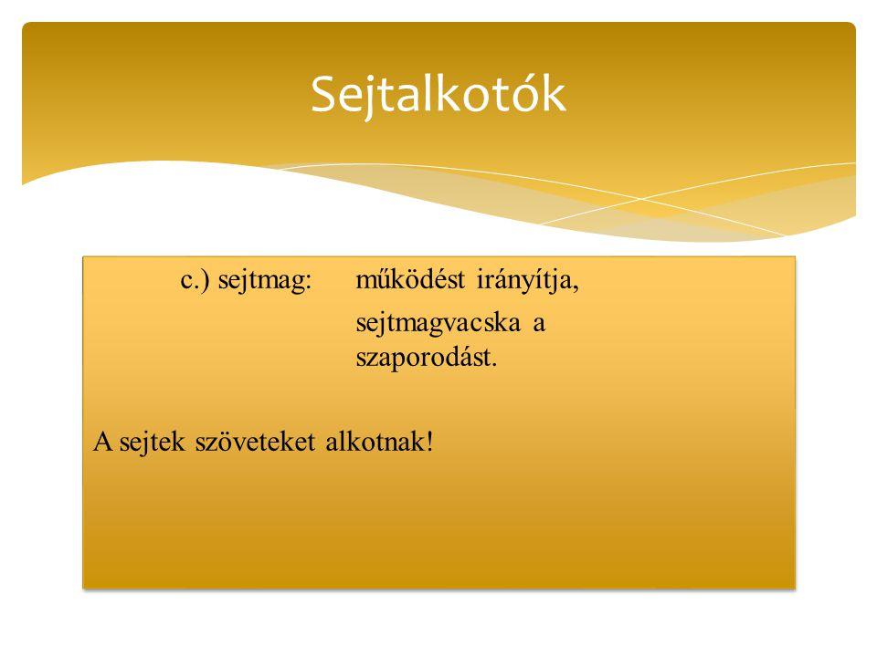 c.) sejtmag:működést irányítja, sejtmagvacska a szaporodást. A sejtek szöveteket alkotnak! c.) sejtmag:működést irányítja, sejtmagvacska a szaporodást