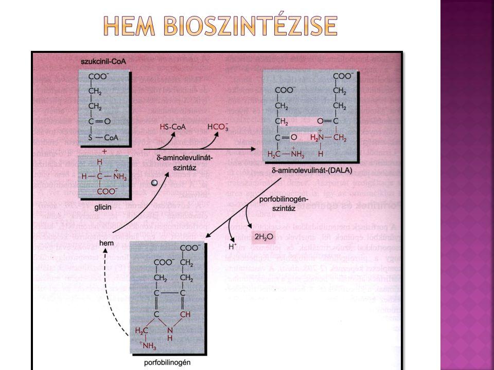  A: acetát  P: propionát  M:metil  V: vinil