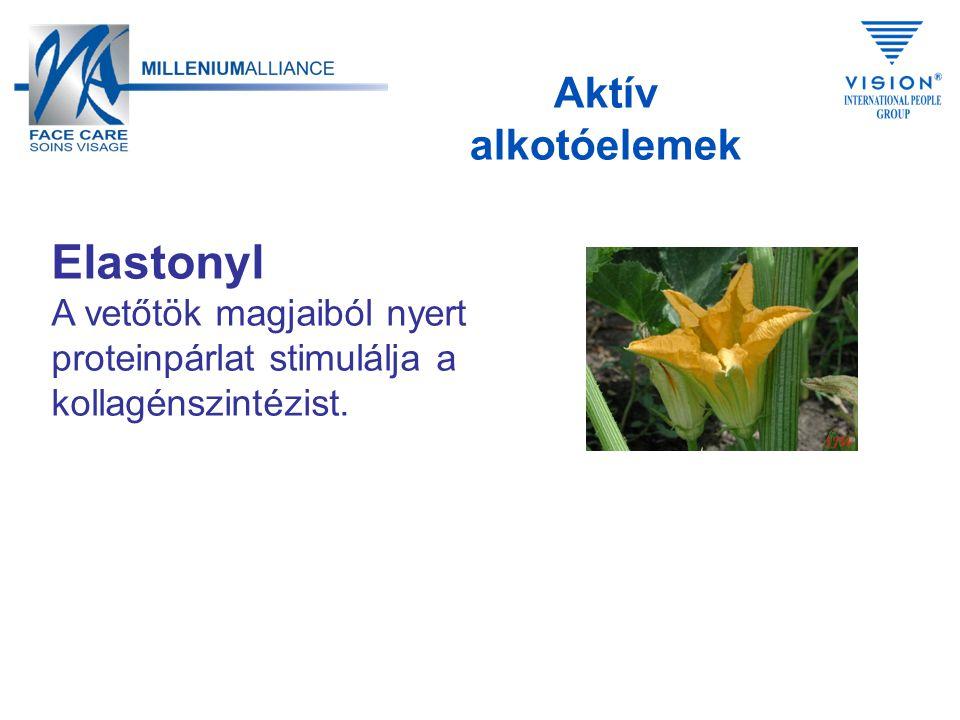 Elastonyl A vetőtök magjaiból nyert proteinpárlat stimulálja a kollagénszintézist.