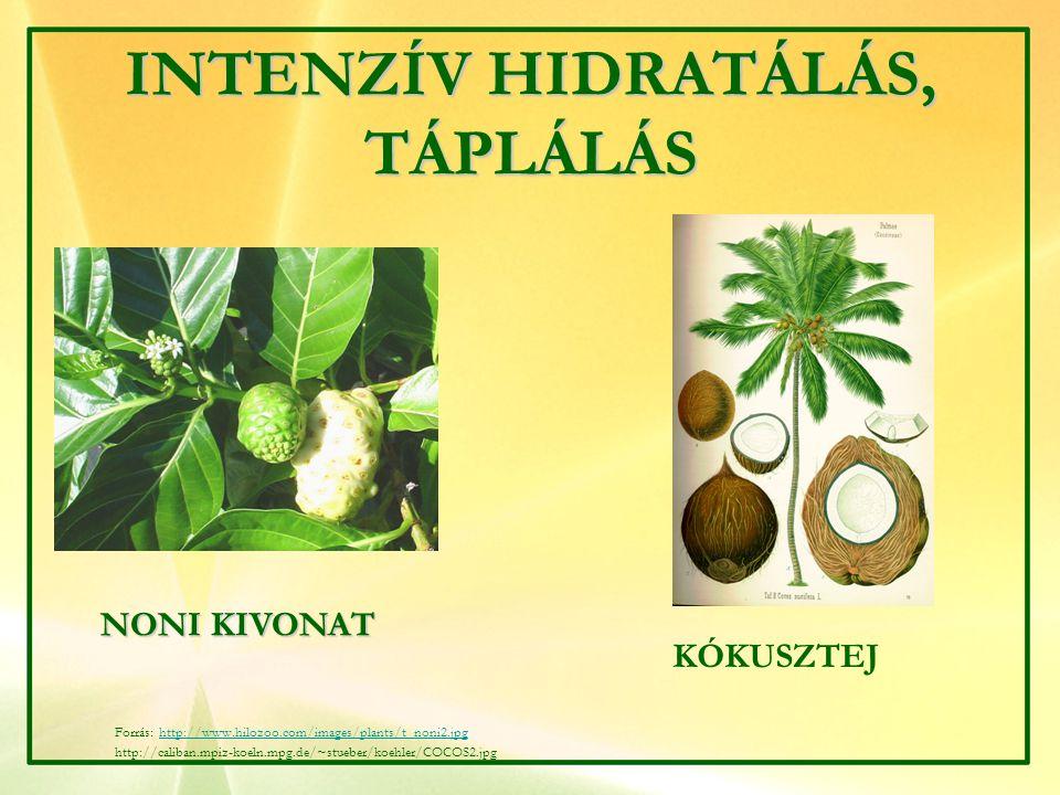 INTENZÍV HIDRATÁLÁS, TÁPLÁLÁS NONI KIVONAT KÓKUSZTEJ Forrás: http://www.hilozoo.com/images/plants/t_noni2.jpghttp://www.hilozoo.com/images/plants/t_no